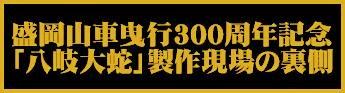 300memorialsplogo.JPG